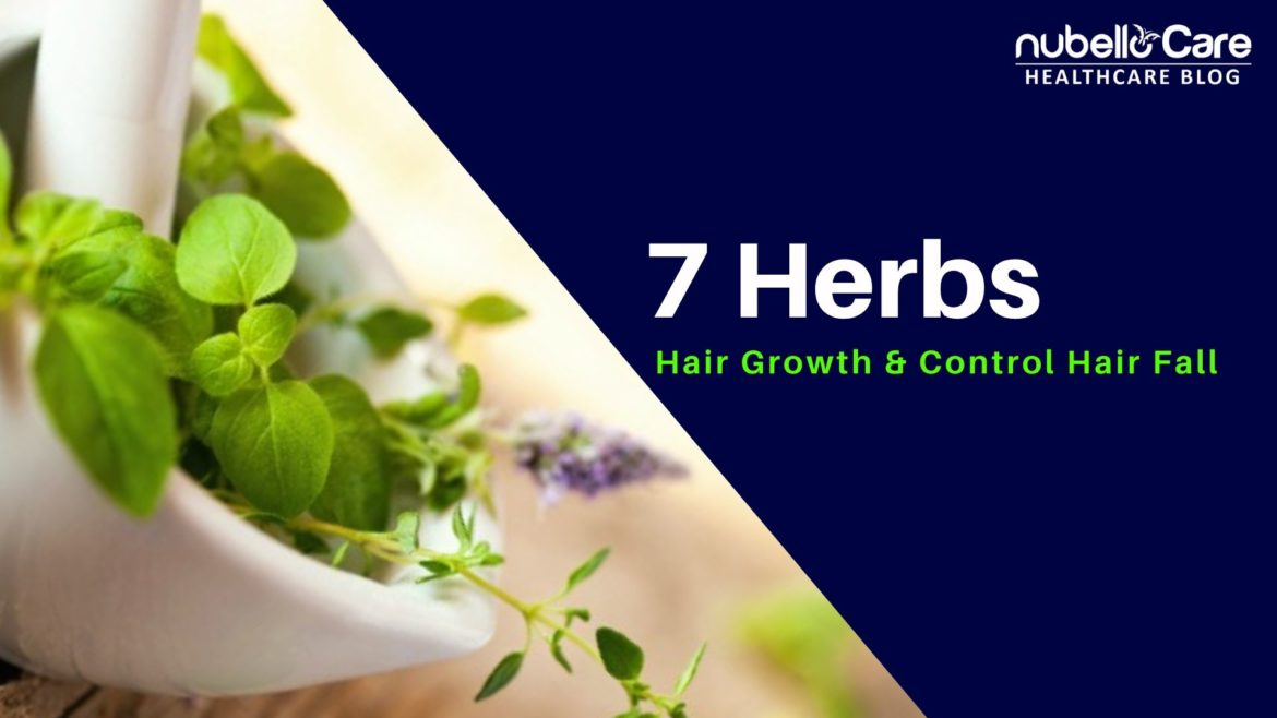 7 Herbs for Hair Growth and Control Hair Fall